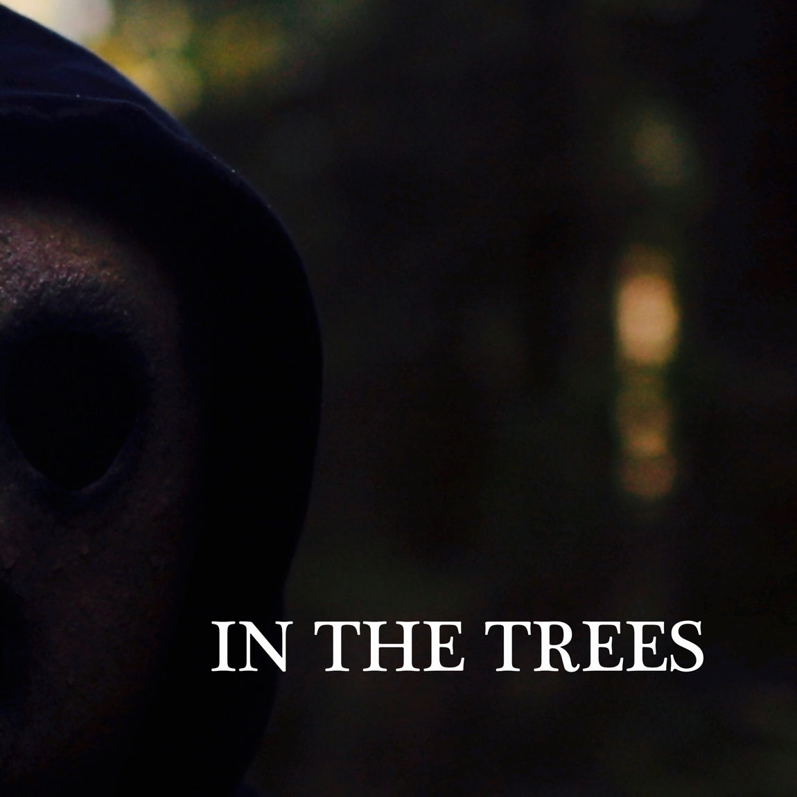 In the Trees by Will Nordstrom