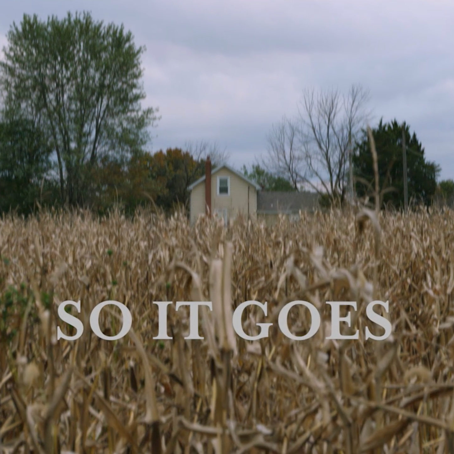 So It Goes by Andy Brosnak